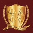 VSIS Logo